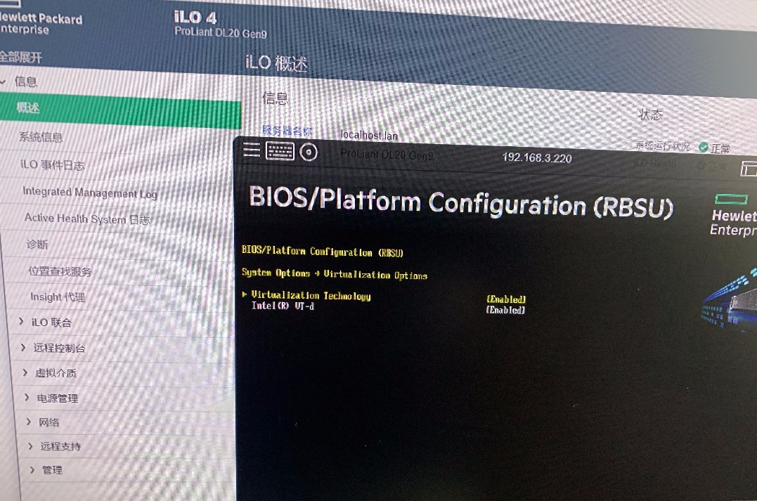 my dl20 gen9 bios option