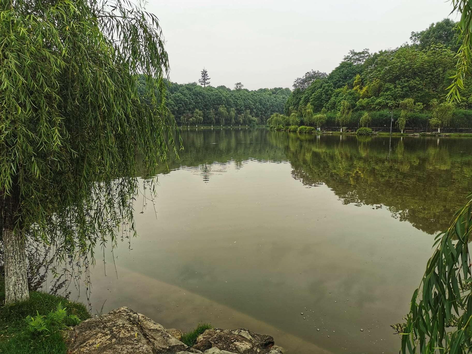 缙湖的湖面