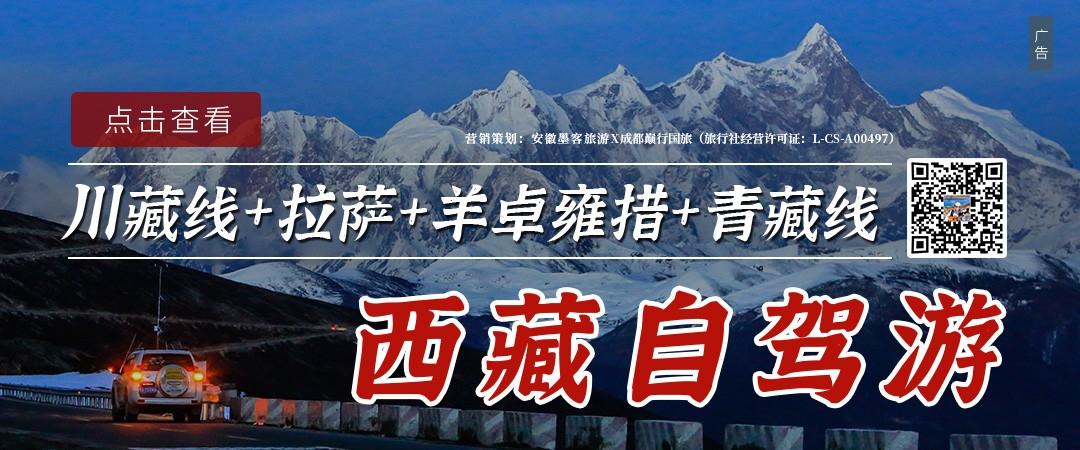 合肥新万博体育网x西藏:拉萨、林芝桃花节