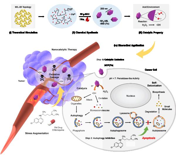 图2.利用氯喹抑制自噬通路增强纳米催化治疗的原理示意图