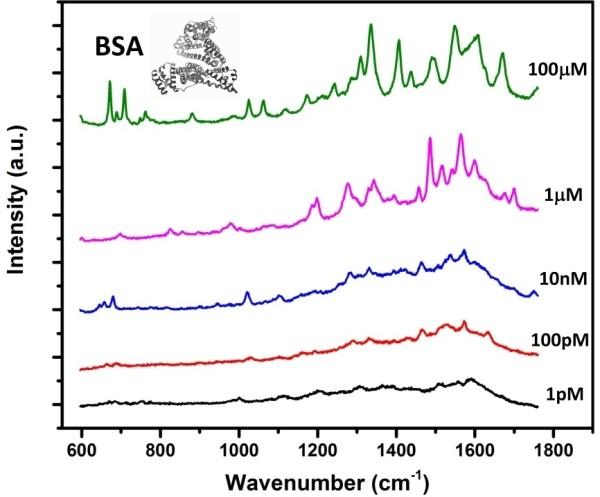 图2.不同浓度的牛血清白蛋白的检测结果