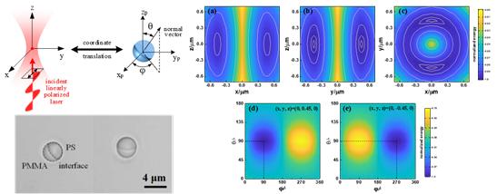研究人员提出了一种光镊可控旋转新方法--图1 PMMA与PS组成的Janus微球以及基于最低能量法则仿真的微球稳定捕获位置与姿态