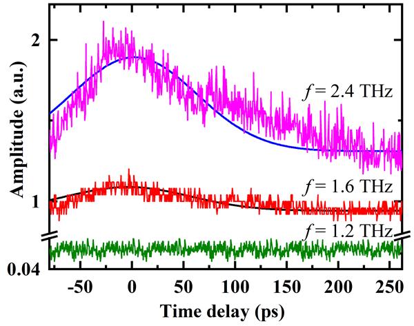 图2.在1.2、1.6和2.4THz自由电子激光辐照下n-GaSb晶体的光透射泵浦-探测特性。粗糙线为原始实验数据,平滑线为理论拟合结果