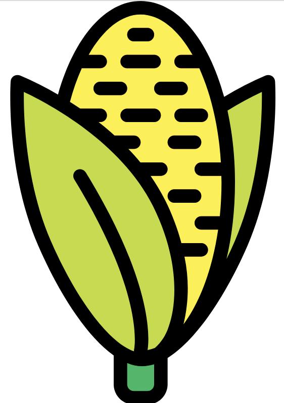 中国科研人员历时10年创建的玉米数据库(ZEAMAP)新版上线