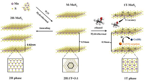 图1.乙醇二次溶剂热法制备1T-MoS2的流程图
