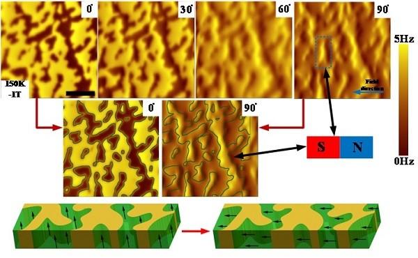 合肥研究院研制出高场磁体中可旋转磁力显微镜