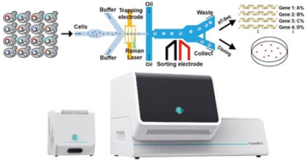 pDEP-RADS技术及仪器系统