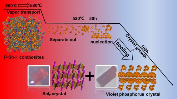 西安交大在紫磷的高产率合成研究中取得重要进展