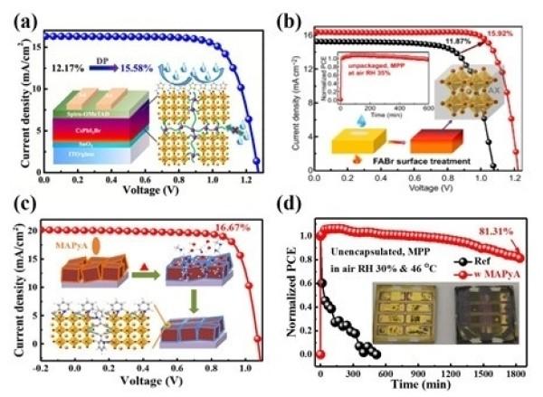宁波材料所在无机钙钛矿电池研究中获进展