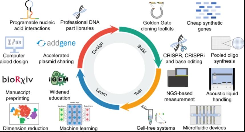图2:在过去十年中,加速了合成生物学的设计,构建,测试,学习周期的新的使能技术和工作方式。