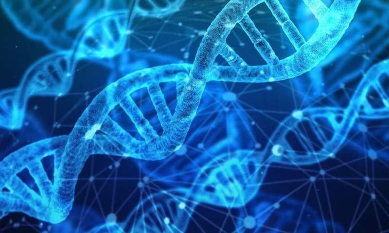 首张人类蛋白质组测序草图绘成