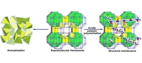 福建物构所分子笼基超分子框架稳定性研究获进展