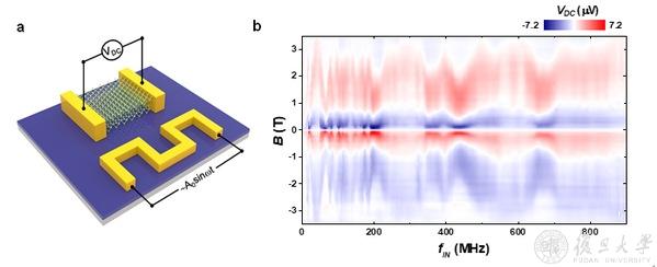 复旦大学在二维超导天线的研究中取得重要进展