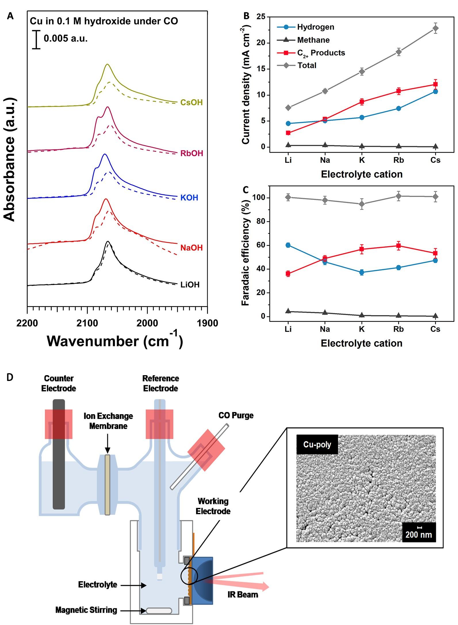 清华团队利用原位表面增强红外光谱技术揭示阳离子效应对一氧化碳电化学转化的影响